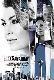 Grey's Anatomy S14E01 FRENCH HDTV