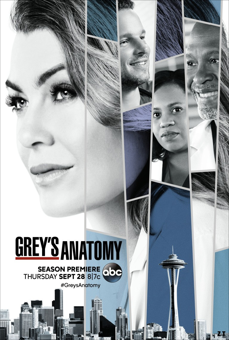 Grey's Anatomy S14E03 FRENCH HDTV