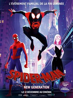 Spider-Man : New Generation FRENCH BluRay 1080p 2018
