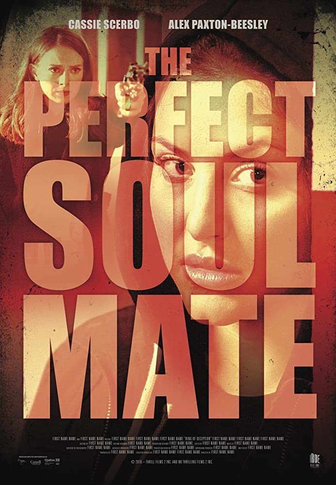 The Perfect Soulmate FRENCH WEBRIP 720p 2020